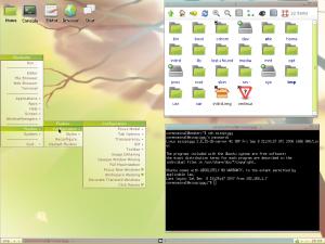120907043625-fluxbuntu3