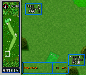 Hole in One Golf 03