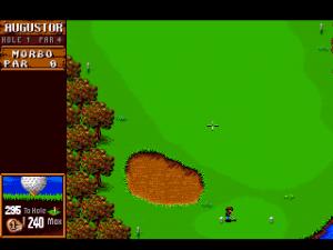 Sensible Golf 06