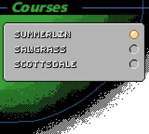 Tiger Woods PGA Tour 2000 05