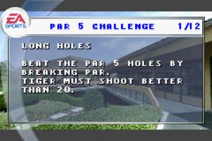 Tiger Woods PGA Tour Golf 03