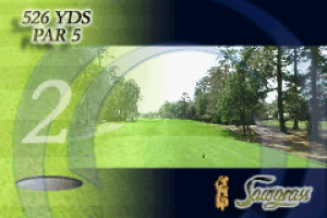 Tiger Woods PGA Tour Golf 04