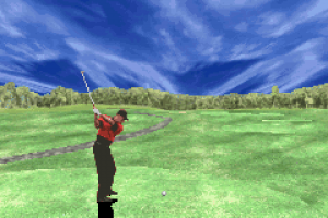 Tiger Woods PGA Tour Golf 10