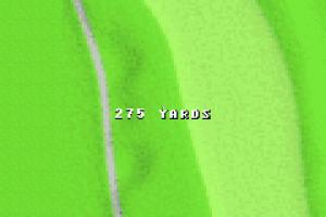 Tiger Woods PGA Tour Golf 12