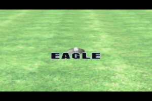 Tiger Woods PGA Tour Golf 15