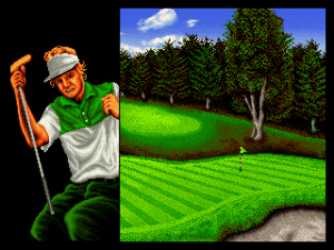 Top Player's Golf 03