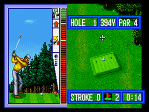 Top Player's Golf 12