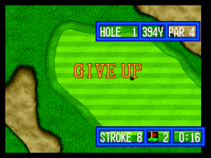 Top Player's Golf 14