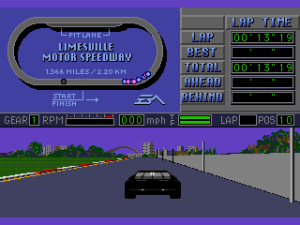 Mario Andretti Racing 13