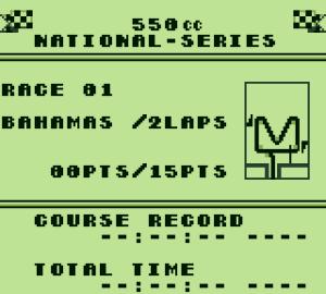 Wave Race 04